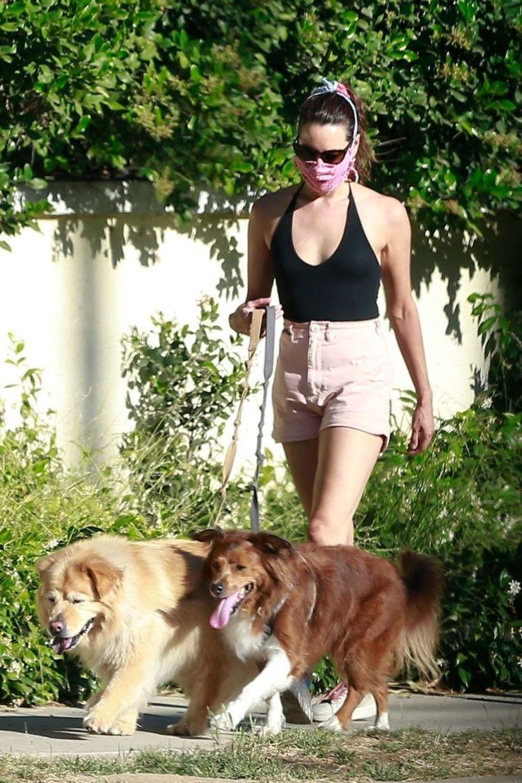 Aubrey Plaza Spotted Walking Her Dogs In Los Feliz