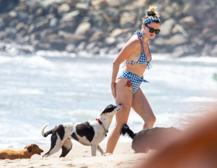 Ireland Baldwin Vacationing In Bikini At The Beach In Malibu